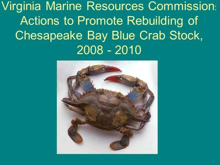 Virginia Marine Resources Commission : Actions to Promote Rebuilding of Chesapeake Bay Blue Crab Stock, 2008 - 2010.
