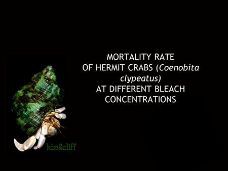 MORTALITY RATE OF HERMIT CRABS (Coenobita clypeatus) AT DIFFERENT BLEACH CONCENTRATIONS.
