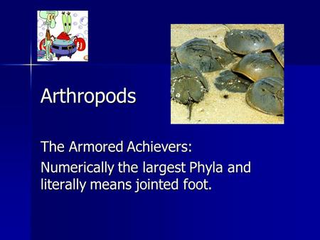 Arthropods The Armored Achievers: Numerically the largest Phyla and literally means jointed foot.