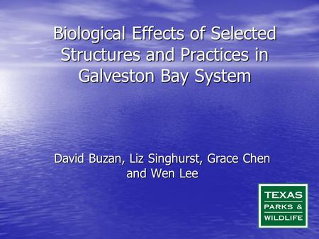 Biological Effects of Selected Structures and Practices in Galveston Bay System David Buzan, Liz Singhurst, Grace Chen and Wen Lee.