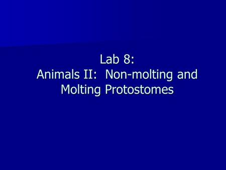 Lab 8: Animals II: Non-molting and Molting Protostomes.