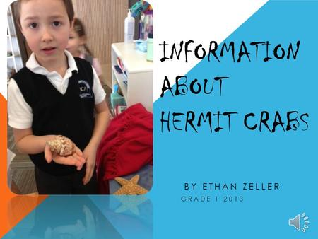 INFORMATION ABOUT HERMIT CRABS BY ETHAN ZELLER GRADE 1 2013.