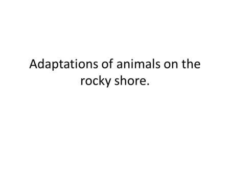 Adaptations of animals on the rocky shore.. What could be affecting this environment???