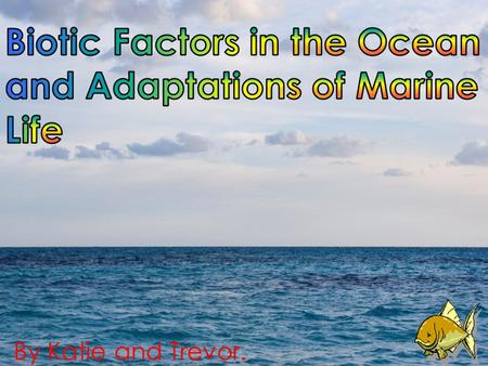 Biotic Factors in the Ocean and Adaptations of Marine Life