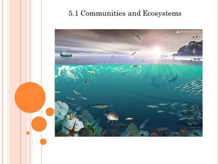 5.1 Communities and Ecosystems. Assessment Statements Define species, habitat, population, community, ecosystem, and ecology Distinguish between autotroph.
