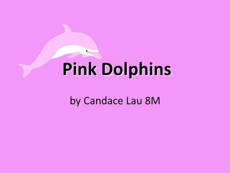 Pink Dolphins by Candace Lau 8M. What are pink dolphins? Pink dolphin's scientific name is sousa chinensis. Pink dolphins are commonly mistaken to be.