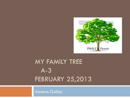 MY FAMILY TREE A-3 FEBRUARY 25,2013 Aeneas Gulley.