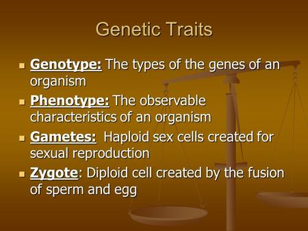 Genetic Traits Genotype: The types of the genes of an organism Genotype: The types of the genes of an organism Phenotype: The observable characteristics.