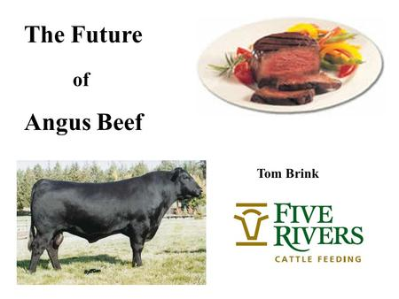 The Future of Angus Beef Tom Brink. Commodity principles: Low costs & production efficiency Added Value & Product differentiation Effective Business Pyramid.