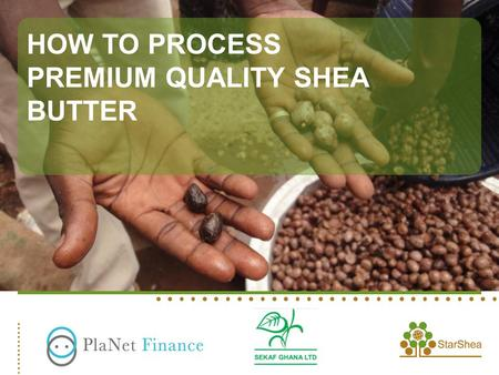 HOW TO PROCESS PREMIUM QUALITY SHEA BUTTER. ©2012 StarShea. All rights reserved.2 Germinated nuts Insect Attack Nuts.