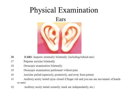 Physical Examination Ears 36 EARS: Inspects externally bilaterally (including behind ears) 37Palpates auricles bilaterally 38 Otoscopic examination bilaterally.