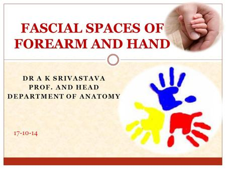 DR A K SRIVASTAVA PROF. AND HEAD DEPARTMENT OF ANATOMY FASCIAL SPACES OF FOREARM AND HAND 17-10-14.