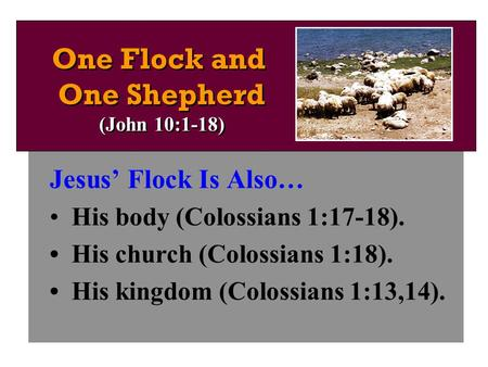 Jesus' Flock Is Also… His body (Colossians 1:17-18). His church (Colossians 1:18). His kingdom (Colossians 1:13,14). One Flock and One Shepherd (John 10:1-18)