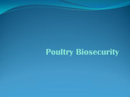 Poultry Biosecurity.