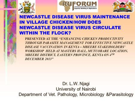 1 NEWCASTLE DISEASE VIRUS MAINTENANCE IN VILLAGE CHICKEN/HOW DOES NEWCASTLE DISEASE VIRUS CIRCULATE WITHIN THE FLOCK? Dr. L.W. Njagi University of Nairobi.