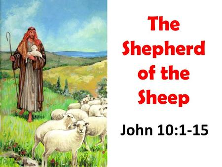 "John 10:1-15 The Shepherd of the Sheep. The Elders as Shepherds, the Church as Sheep Acts 20:28 –""Therefore take heed to yourselves and to all the flock,"