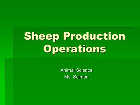 Sheep Production Operations Animal Science Ms. Selman.