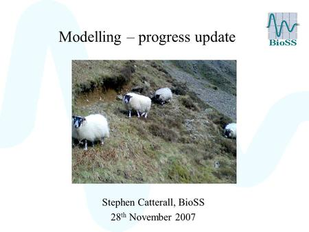 Modelling – progress update Stephen Catterall, BioSS 28 th November 2007.