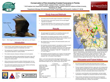 Conservation of Non-breeding Crested Caracaras in Florida James F. Dwyer 1, James D. Fraser 1, and Joan L. Morrison 2 1 106 Cheatham Hall, Department Fisheries.