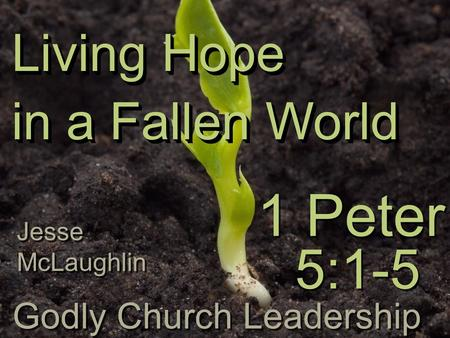 Living Hope in a Fallen World 1 Peter Living Hope in a Fallen World Godly Church Leadership 5:1-5 Jesse McLaughlin.