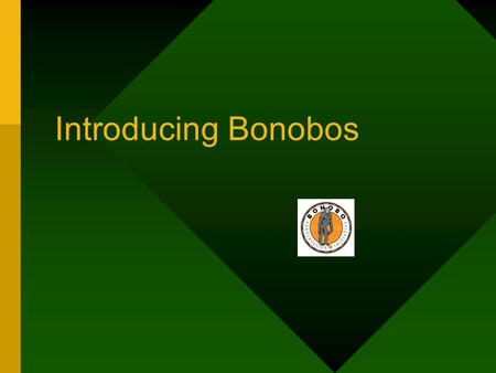Introducing Bonobos. Have you heard of bonobos? Bonobo Pan paniscus.