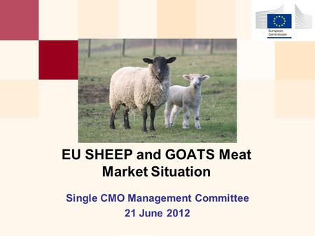 Single CMO Management Committee 21 June 2012 EU SHEEP and GOATS Meat Market Situation.