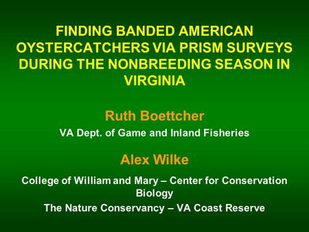 FINDING BANDED AMERICAN OYSTERCATCHERS VIA PRISM SURVEYS DURING THE NONBREEDING SEASON IN VIRGINIA Ruth Boettcher VA Dept. of Game and Inland Fisheries.