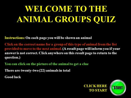 WELCOME TO THE ANIMAL GROUPS QUIZ Instructions: On each page you will be shown an animal Click on the correct name for a group of this type of animal from.