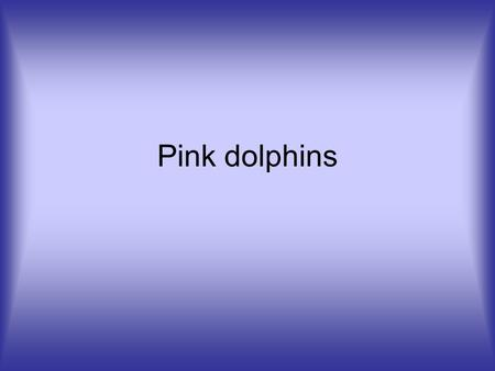 Pink dolphins. Why are dolphins are endangered? The sea of Hong Kong is becoming a very dangerous habitat for the Pink Dolphins these days. This is because.