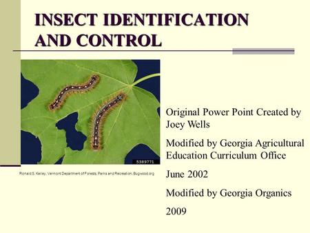 INSECT IDENTIFICATION AND CONTROL Original Power Point Created by Joey Wells Modified by Georgia Agricultural Education Curriculum Office June 2002 Modified.