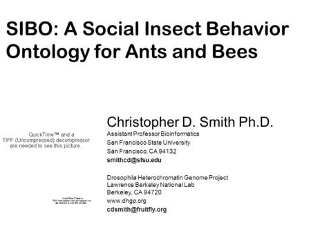 SIBO: A Social Insect Behavior Ontology for Ants and Bees Christopher D. Smith Ph.D. Assistant Professor Bioinformatics San Francisco State University.