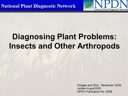 Diagnosing Plant Problems: Insects and Other Arthropods Hodges and Ellis. December 2006. Update, August 2008. NPDN Publication No. 0008.