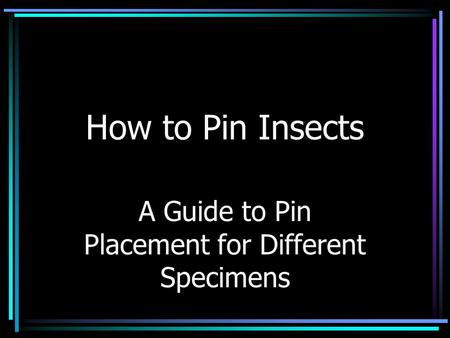 How to Pin Insects A Guide to Pin Placement for Different Specimens.
