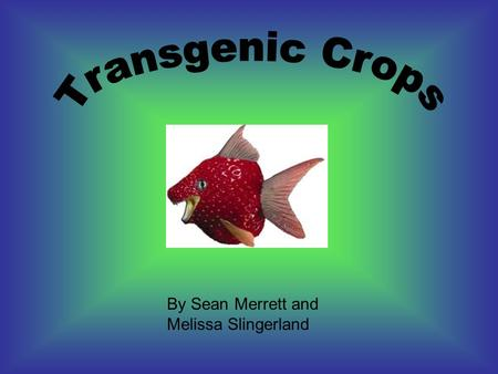 By Sean Merrett and Melissa Slingerland. are also known as genetically modified or GM crops A transgenic crop plant contains a gene or genes which have.