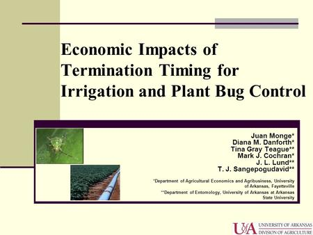 Economic Impacts of Termination Timing for Irrigation and Plant Bug Control Juan Monge* Diana M. Danforth* Tina Gray Teague** Mark J. Cochran* J. L. Lund**