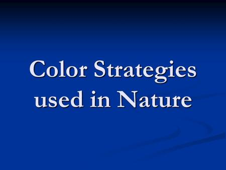 Color Strategies used in Nature. Camouflage (Concealing)