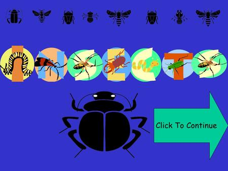 Click To Continue. INSECTS HAVE MAIN BODY PARTS Continue.