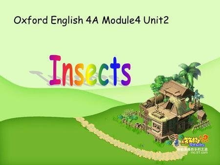 Oxford English 4A Module4 Unit2 a bee h feelers legs a body wings eyes a head h b w f e ltc.