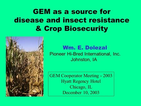 GEM as a source for disease and insect resistance & Crop Biosecurity Wm. E. Dolezal Pioneer Hi-Bred International, Inc. Johnston, IA GEM Cooperator Meeting.