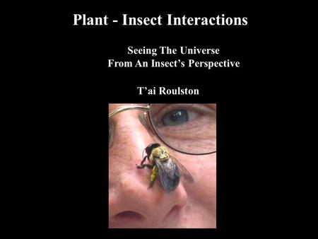 Plant - Insect Interactions Seeing The Universe From An Insect's Perspective T'ai Roulston.