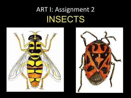 ART I: Assignment 2 INSECTS. What shapes do you see? What lines do you see? What patterns do you see? Are the insects symmetrical or asymmetrical?