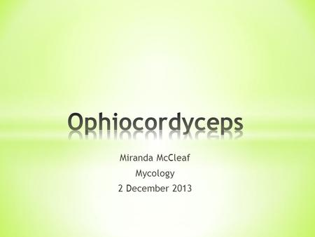 Miranda McCleaf Mycology 2 December 2013. * Characteristics of the genus Ophiocordyceps * Taxonomic specifications * Life Cycle Characteristics * Three.