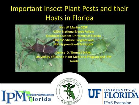 Important Insect Plant Pests and their Hosts in Florida Kirk W. Martin CBSP USDA-National Needs Fellow Graduate Student-University of Florida Plant Medicine.