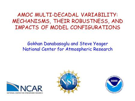 AMOC MULTI-DECADAL VARIABILITY: MECHANISMS, THEIR ROBUSTNESS, AND IMPACTS OF MODEL CONFIGURATIONS Gokhan Danabasoglu and Steve Yeager National Center for.