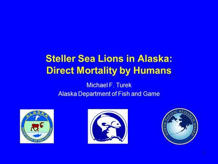 1 Steller Sea Lions in Alaska: Direct Mortality by Humans Michael F. Turek Alaska Department of Fish and Game.