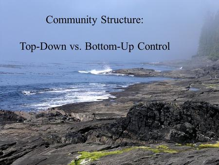 Community Structure: Top-Down vs. Bottom-Up Control.