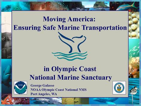 The National Marine Sanctuary Program Moving America: Ensuring Safe Marine Transportation in Olympic Coast National Marine Sanctuary George Galasso NOAA.