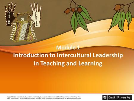 Module 1 Introduction to Intercultural Leadership in Teaching and Learning.