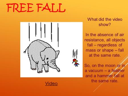 Free Fall What did the video show?
