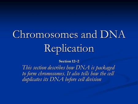 Chromosomes and DNA Replication